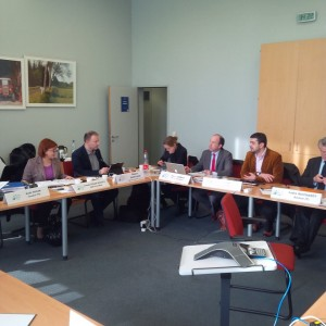 Sedinta de Birou Executiv, Strasbourg, 2014 3